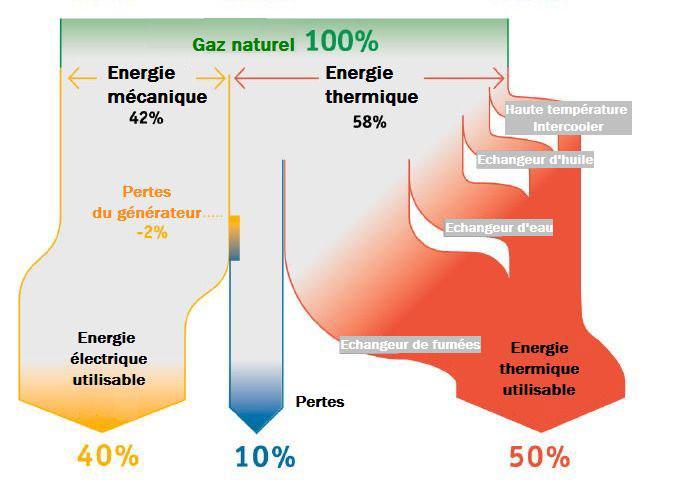 Pourcentage utilisation gaz naturel en cogénération